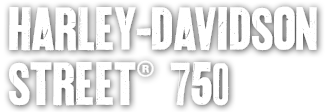 Disco Freno Posteriore Harley Davidson Sportster 1000 1000 Roadster 1200 Sportster 1200 Sport 1340 1340 1340 1340 Flstc 1340 19891999 Fxlr 1340 Rider Custom 19871999 P 21002 further 281992234213 in addition Saddlebag Supports in addition Artikel in addition Harley Davidson Fatboy With Ape Hangers. on harley davidson sportster 1200 low